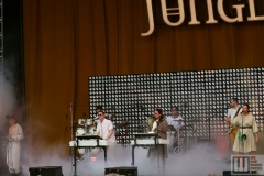JUNGLE live at Metronome Festival Prague 2019 / photo by: David MJRSK