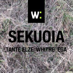 Sekuoia-vizual 31.1.2015