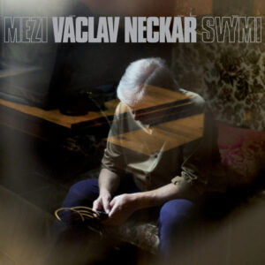 vn_ms_cover_sm
